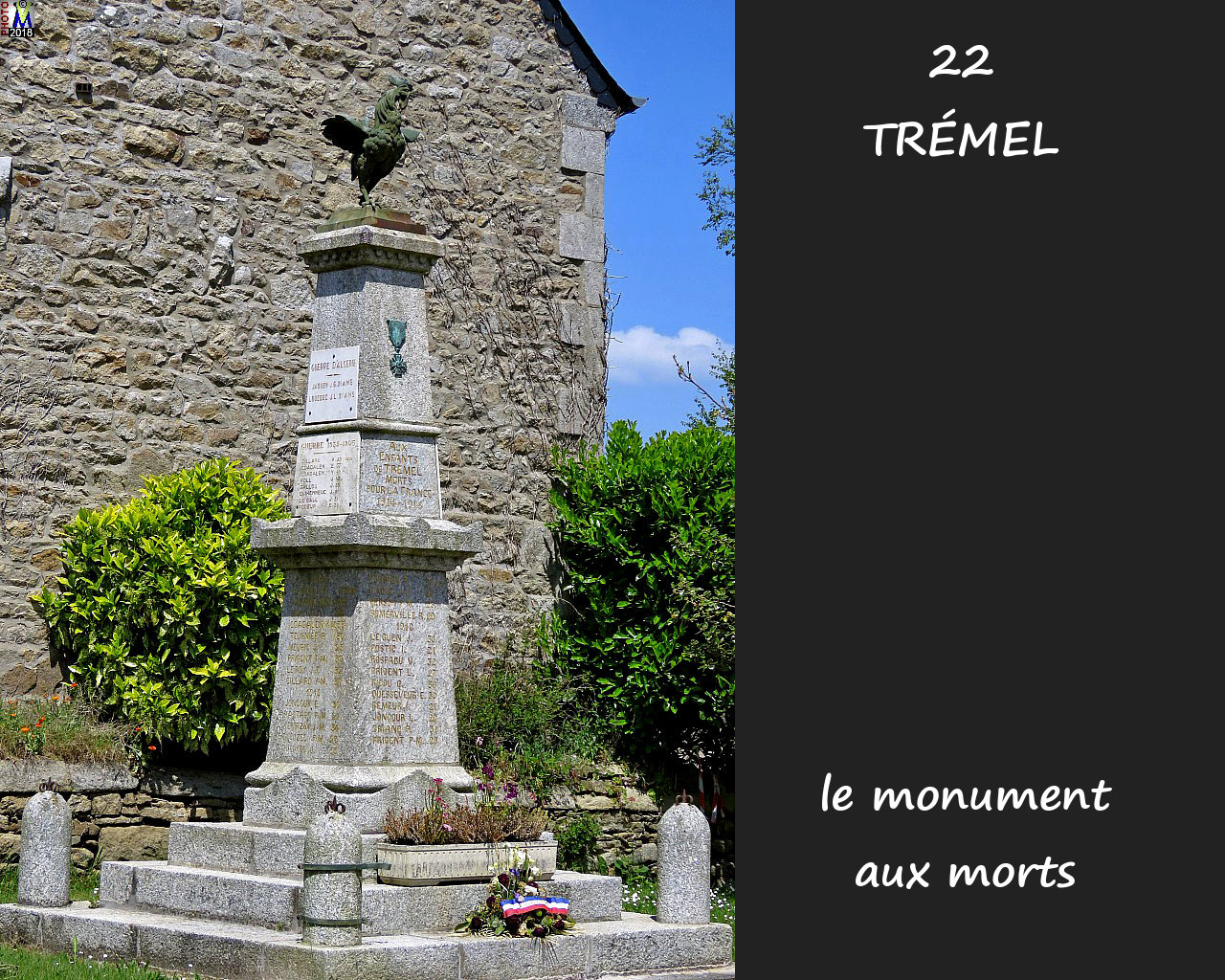 22TREMEL_morts_100.jpg